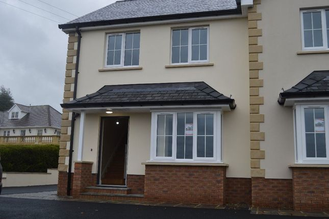 Thumbnail Property to rent in Llanybydder
