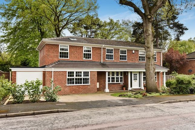 Thumbnail Detached house for sale in Russet Gardens, Camberley