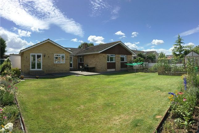 Thumbnail Detached bungalow for sale in Easton-In-Gordano, North Somerset