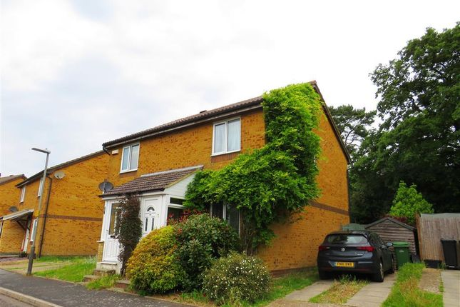 Thumbnail Property to rent in Fairfield Road, St. Leonards-On-Sea