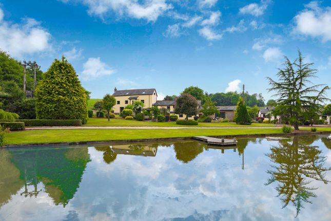 Thumbnail Detached house for sale in Kentisbeare, Cullompton, Devon