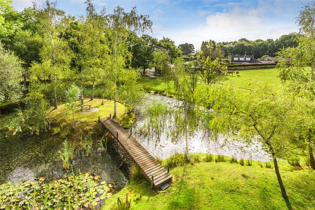 Houses For Sale In Forest Row East Sussex