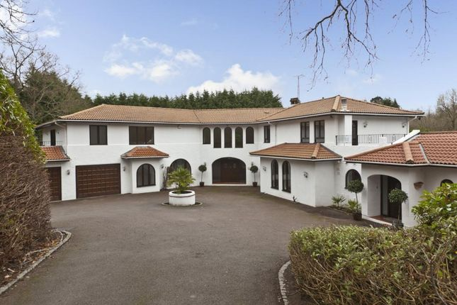 Thumbnail Detached house to rent in East Road, St Georges Hill