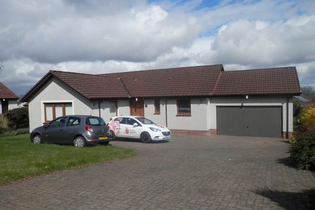 Thumbnail Bungalow to rent in West Mains Avenue, Perth