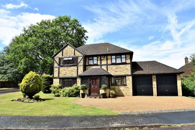 Thumbnail Detached house for sale in Hawkes Leap, Windlesham, Surrey