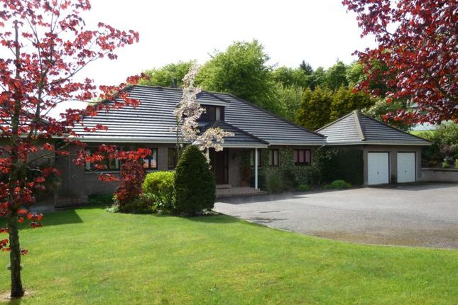 Thumbnail Detached house to rent in Beechwood House, Banchory Devenick, Aberdeen