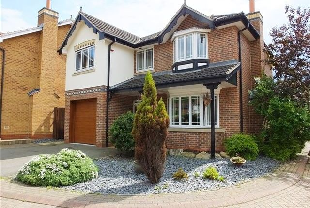 Thumbnail Detached house to rent in Cannonthorpe Rise, Treeton, Rotherham