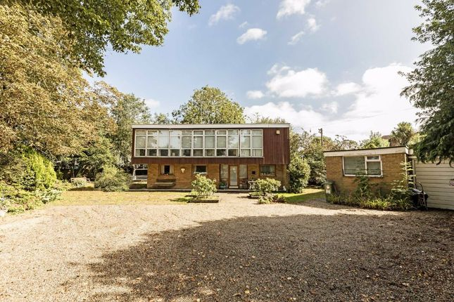 Thumbnail Detached house for sale in Upper Sunbury Road, Hampton