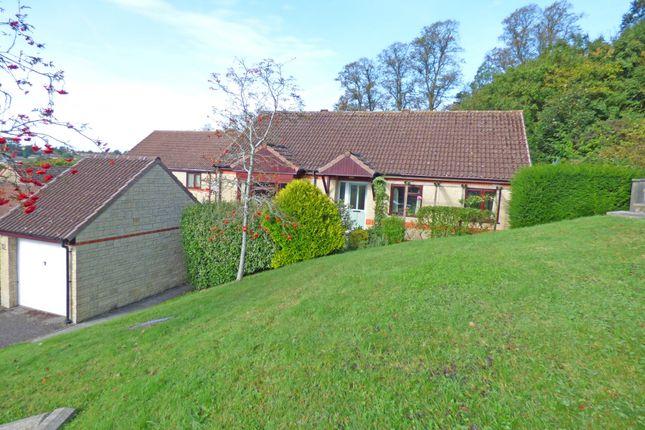 Thumbnail Detached bungalow for sale in Les Rosiers Grove, Wincanton