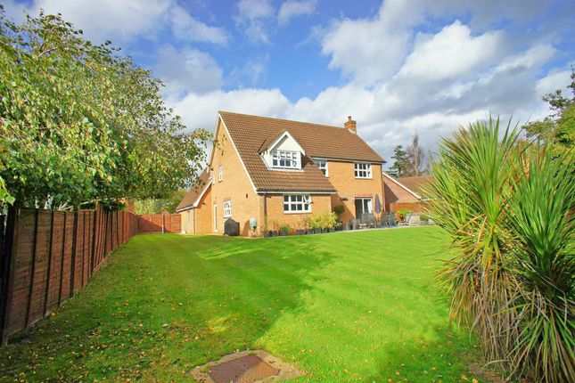 Thumbnail Detached house for sale in Crofton Grove, London