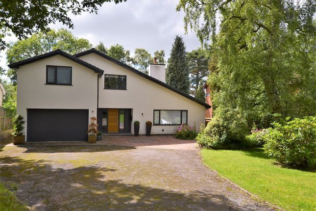 Thumbnail Detached house for sale in Black Firs Lane, Somerford, Congleton