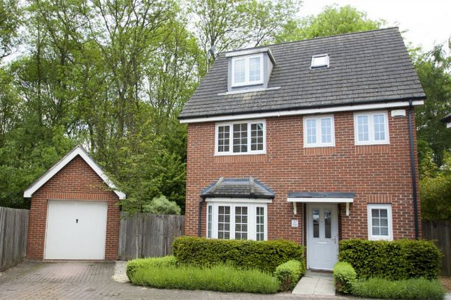 Thumbnail Detached house for sale in Athoke Croft, Hook