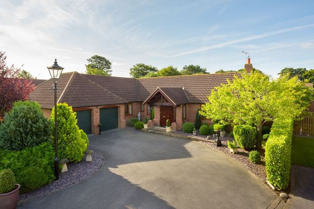 Thumbnail Bungalow for sale in Farriers Chase, Strensall, York