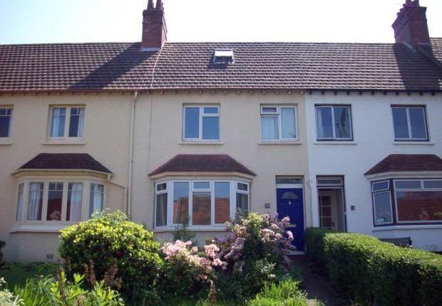 Thumbnail Property to rent in Harepark Terrace, Hopcott Road, Minehead