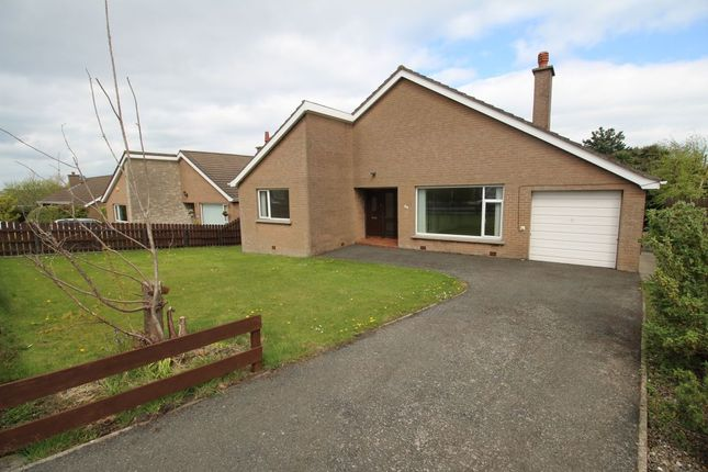 Thumbnail Bungalow for sale in Ballymacormick Drive, Bangor