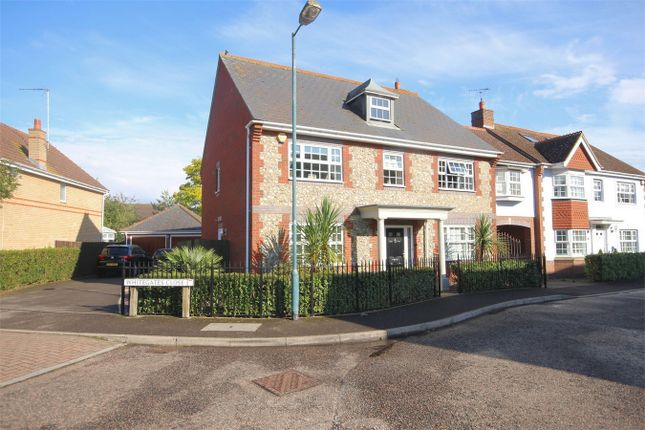 Thumbnail Detached house for sale in Pintail Crescent, Great Notley, Braintree, Essex