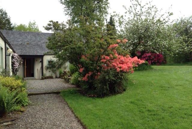 Thumbnail Detached house to rent in Millfaid House, Croftamie, By Drymen