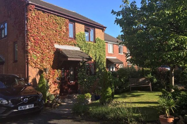 Thumbnail Detached house for sale in Swallow Close, Ashington