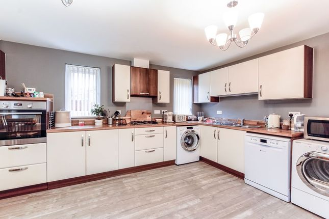 Thumbnail Detached house to rent in Raleigh Road, Yeovil