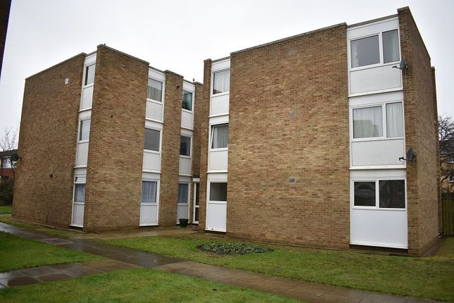Thumbnail Flat to rent in Sandpipers, Watermead Road, Farlington
