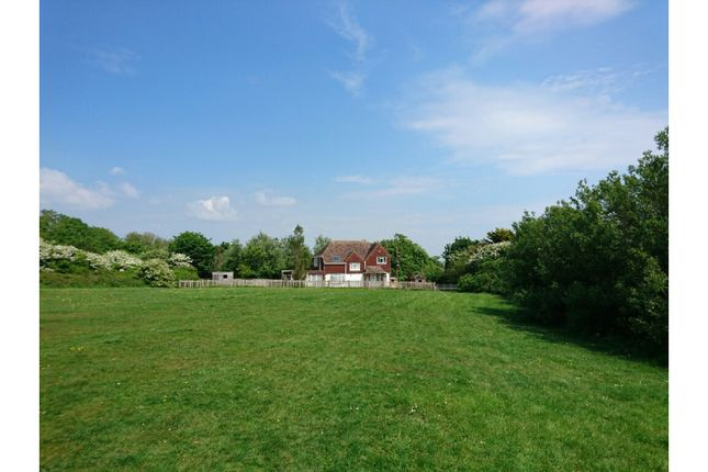 Thumbnail Detached house for sale in Church Hill, Newhaven