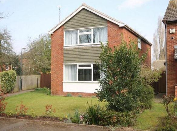 Thumbnail Property to rent in Stare Green, Cannon Park, Coventry