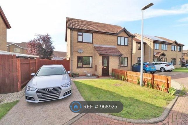 2 bed semi-detached house to rent in Sunningdale Drive, Immingham DN40