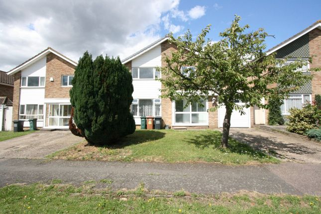 Thumbnail Detached house to rent in Leigh Rodd, Watford