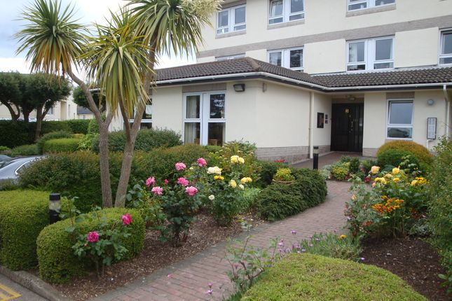 Thumbnail Flat to rent in St Albans Road, Torquay