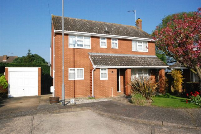 Thumbnail Detached house for sale in St Fabians Drive, Chelmsford, Essex