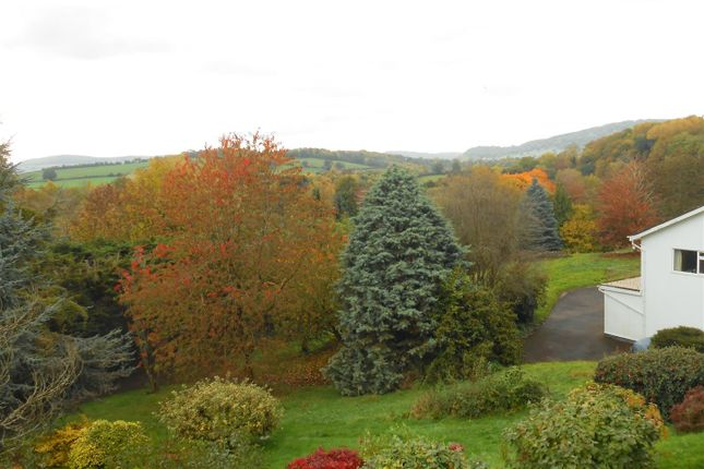 Plot At Brambles, Plot And View In Autumn