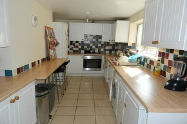 Thumbnail Terraced house to rent in Nelson Street, Plymouth