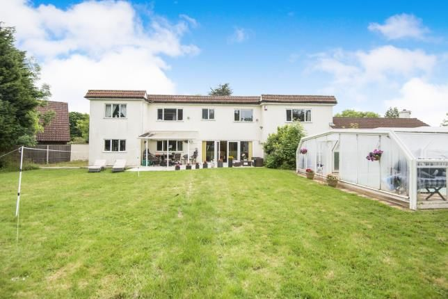 Thumbnail Detached house for sale in St Helens Road, Hastings, East Sussex