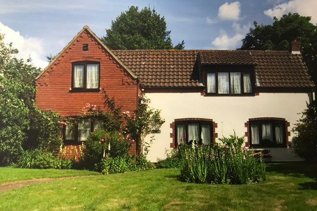 Thumbnail Detached house for sale in The Common, Fleggburgh, Great Yarmouth