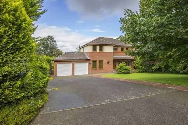 Thumbnail Property to rent in The Orchard, Hepscott, Morpeth