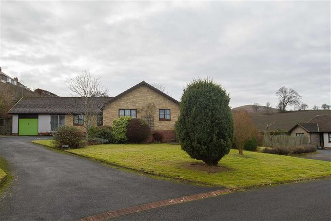 Thumbnail Detached house for sale in Ryecroft Park, Wooler, Northumberland