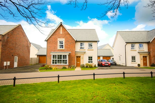 Thumbnail Detached house for sale in Company Road, Fremington, Barnstaple