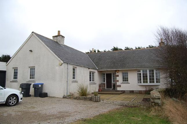 Thumbnail Bungalow to rent in Newtonhill, Aberdeenshire