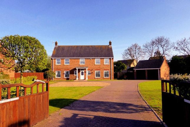 Thumbnail Country house for sale in Willows Close, Tydd St Mary, Lincolnshire