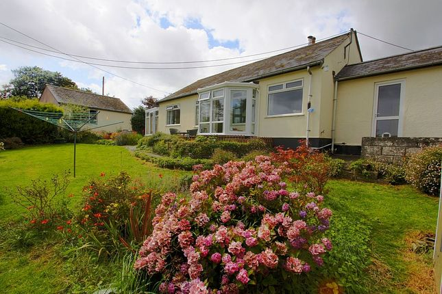 Thumbnail Detached bungalow for sale in Pelynt, Looe, Cornwall