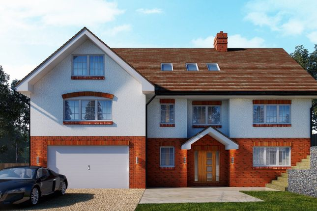 Thumbnail Detached house for sale in Broadwas, Worcester