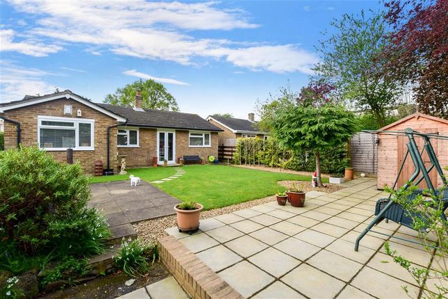 Thumbnail Detached bungalow for sale in Chudleigh Gardens, Sutton, Surrey