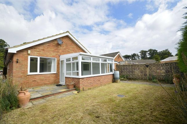 Thumbnail Detached bungalow for sale in The Paddock, Raunds, Northamptonshire