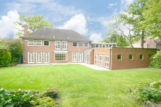 Thumbnail Detached house to rent in Winnington Road, Hampstead Garden Suburb