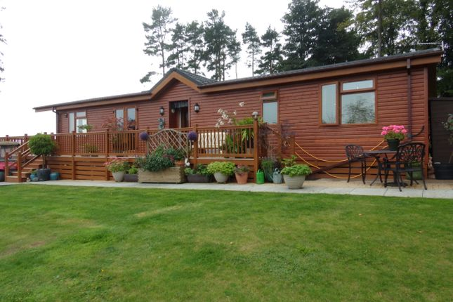 Thumbnail Bungalow for sale in Swarland, Morpeth