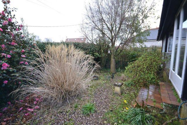 Front Garden of East Budleigh Road, Budleigh Salterton, Devon EX9