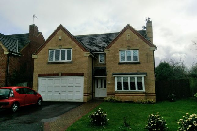 Thumbnail Detached house to rent in Applin Green, Bristol