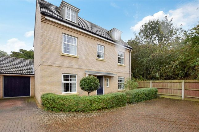 Thumbnail Detached house for sale in Riverside Way, Sible Hedingham, Essex