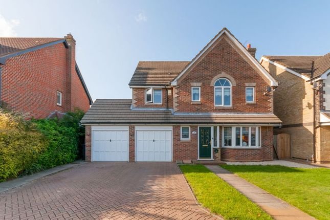 Thumbnail Detached house to rent in Pulham Avenue, Broxbourne