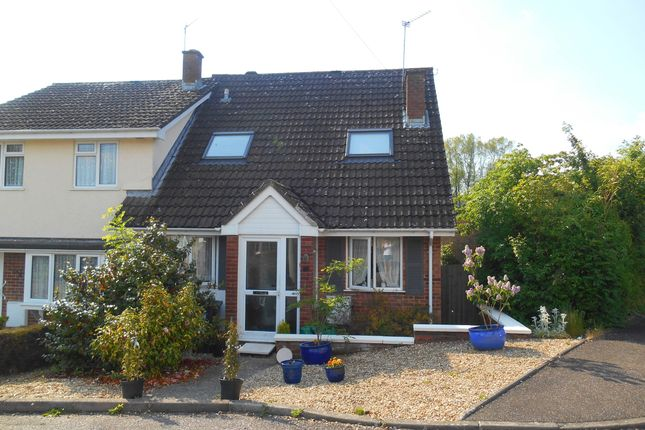 Thumbnail Property to rent in Willowdale Close, Honiton